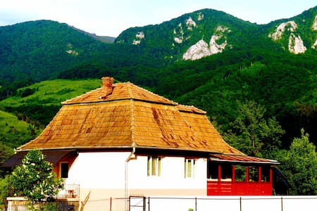 Funky house in the fairytale, rural Transylvania
