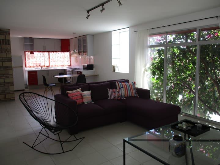 Orquídea de árbol. Amplio, estilo y ubicación.