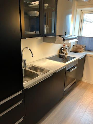 Cooler/freezer/dishwasher/oven/aspiration