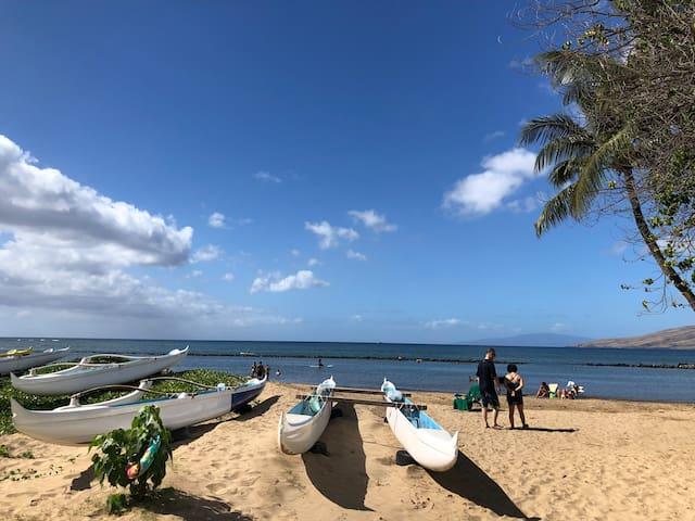 Entirely Upgraded Resort condo near the beach