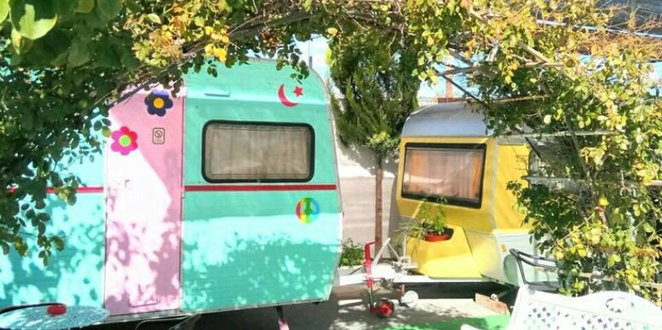 Saxrural Caravan