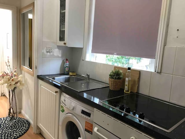 Nice Apartment for 2-4 people in Central London