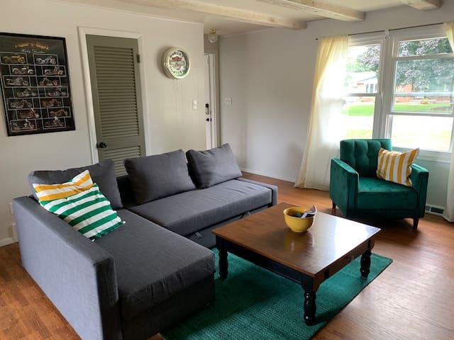 Family room 1 - sofa sleeper
