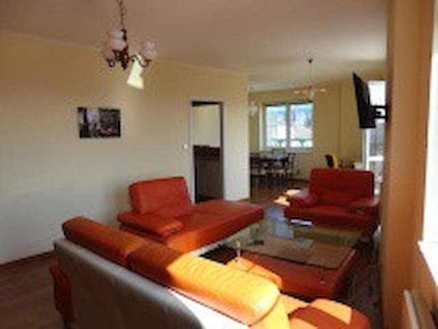 Luxury Apartment Close To Center Of Prague - Prague - Apartment