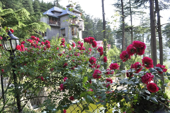 Heritage stay to get unmatched experience - Manali