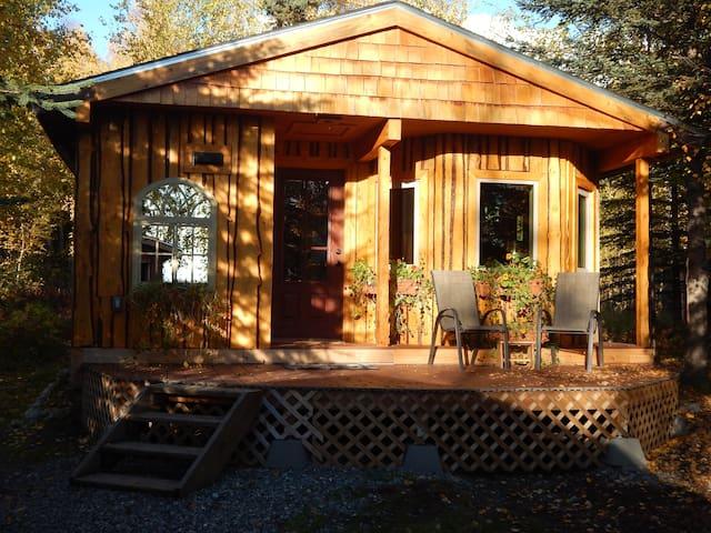 Talkeetna Basecamp wilderness cabin