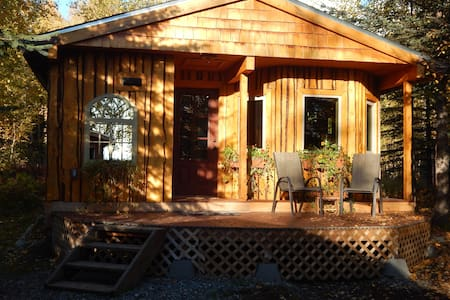 Talkeetna Basecamp wilderness cabin