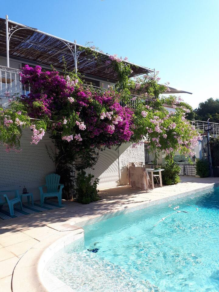 Faron R.D.C piscine vue mer jardin proche ville