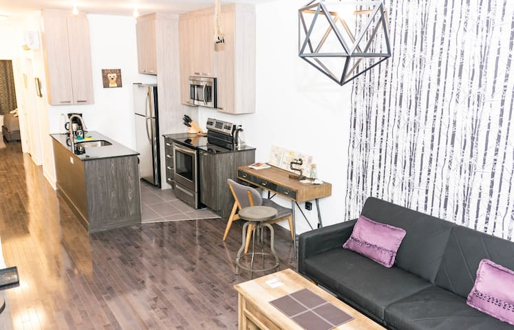 SPACIOUS AND PET FRIENDLY APARTMENT - LE-PLATEAU-MONT-ROYAL, MONTREAL
