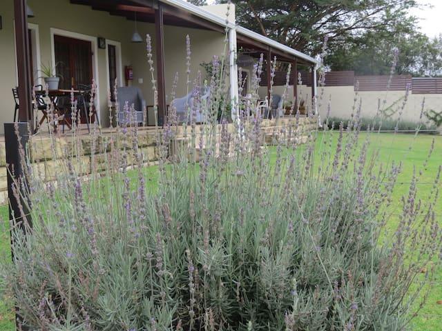 Garden Cottages Patio