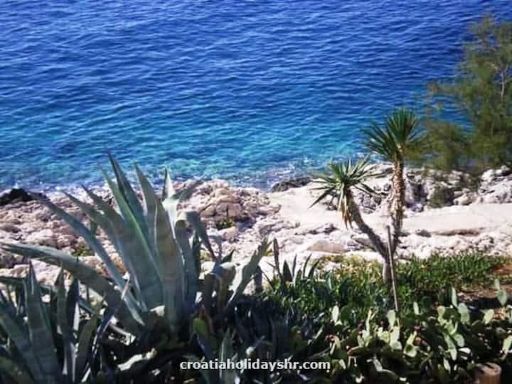 APARTMENT MIA - by the sea