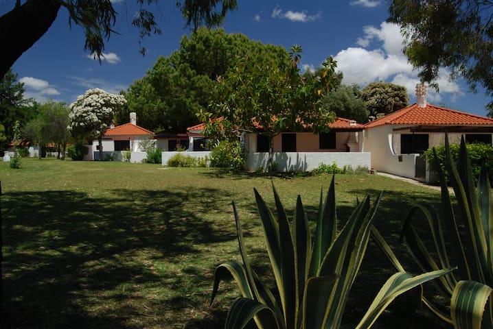 Pequena Moradia em Pedras d'El Rey - PT - Casa adossada