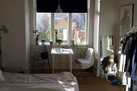 Big and nice room overlooking Latinerkvarteret - อาร์ฮุส