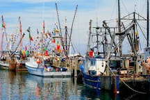 Fishing boats in Provincetown Harbor.