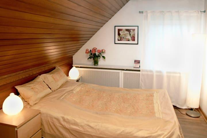 Orchid Room, in historical Villa on the Rhein