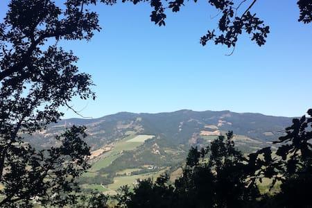 Magnifique cabane dans les arbres, vue panoramique - Thoard - Treehouse - 2