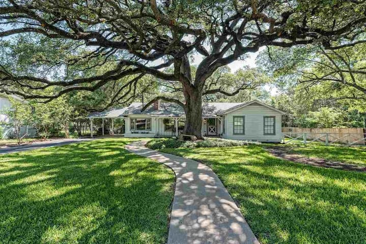 The Waco Tree House