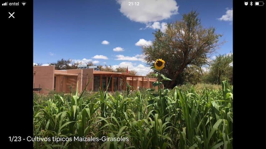 Naturaleza y Relajo en el Desierto : casa entera
