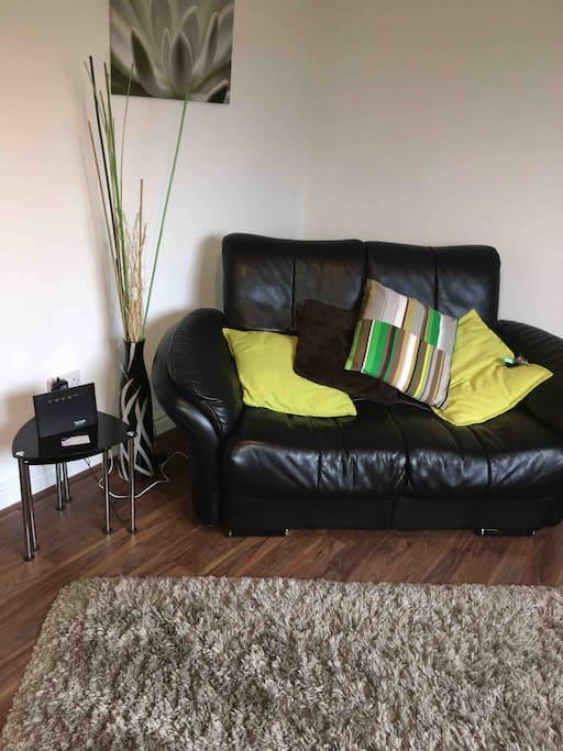 Modern living Room and sofa