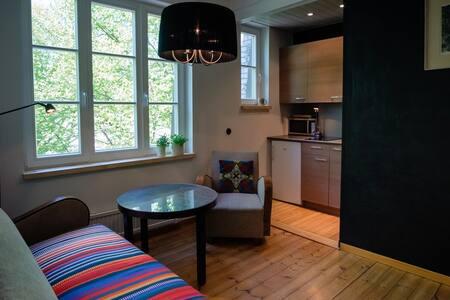 Bohemian Apartment - Telliskivi Creative City