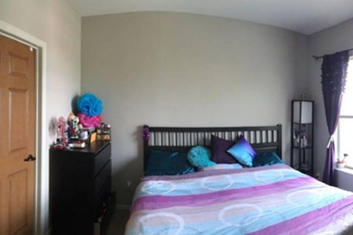 Cozy Private Apt Near Mayo, Walkin distance to all - Rochester - Leilighet