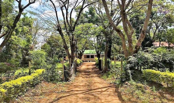 Olduvai Hostel