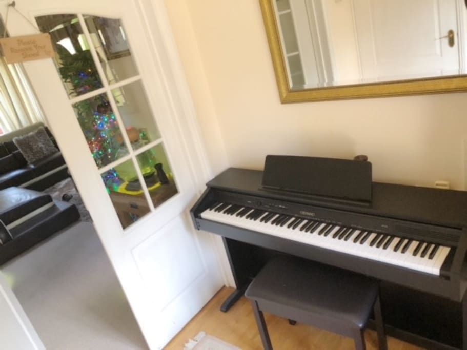 Piano for your use if you do fancy