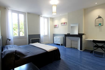 Spacious room in city center - Albi - Bed & Breakfast