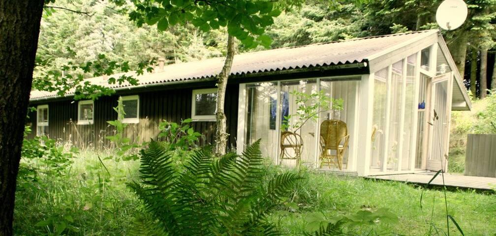 Sommerhus ved Løkken - Løkken - Cabin