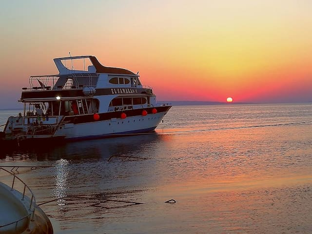 Luxury cruise on red sea, 4 star, all inclusive