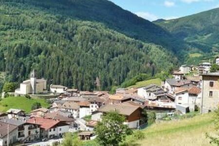 Tranquillo appartamento tra il verde delle Alpi
