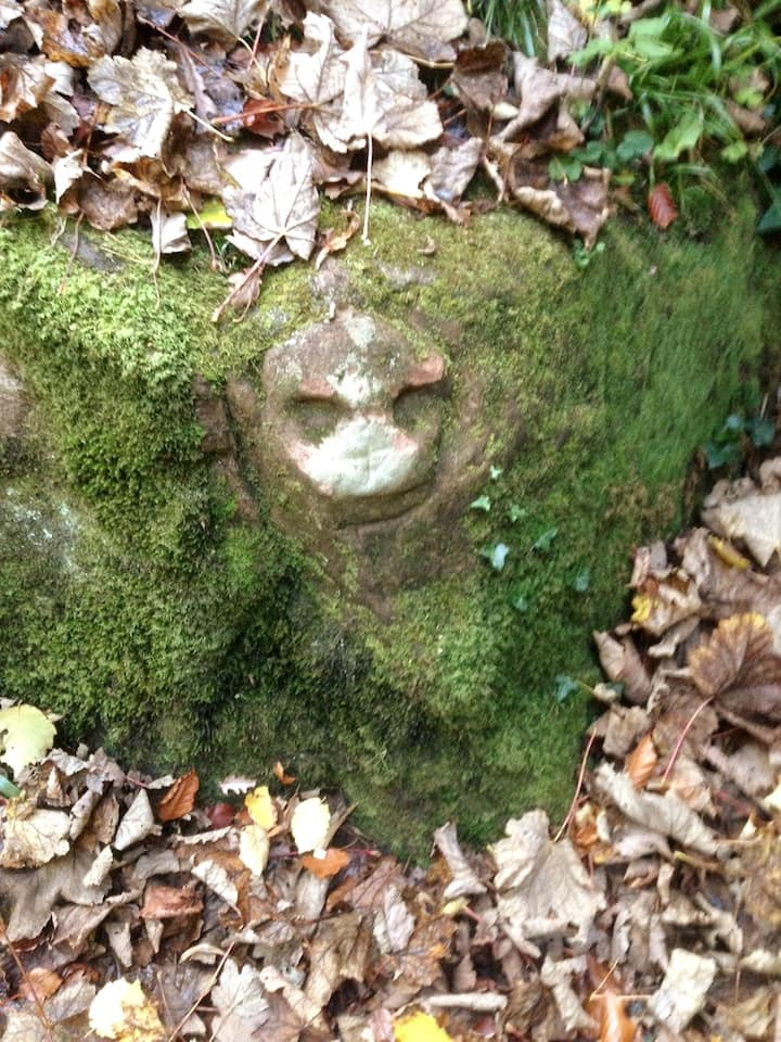 Neolithic carving in the glen