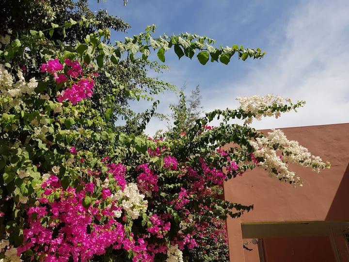 Chambre Rose à louer dans une villa