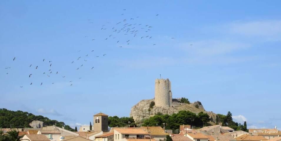 La tour Barberousse avec une jolie vue panoramique
