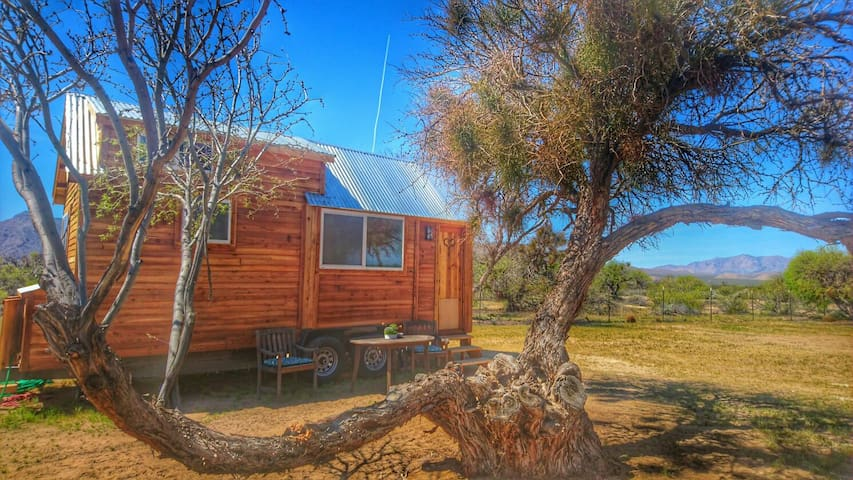 Tiny House near Death Valley /The hummingbird