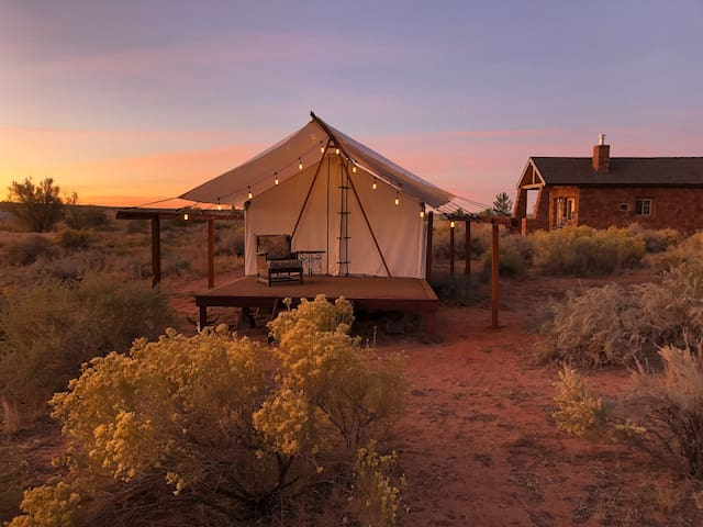 World's best Glamping tent at the Cane Beds Corral