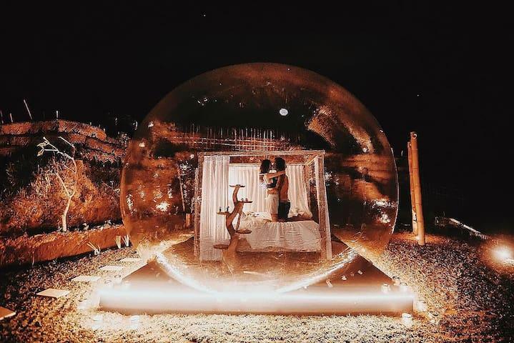 Transparent bubble dome in a wild nature (3)
