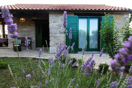 Stone house near Zadar - Tinj