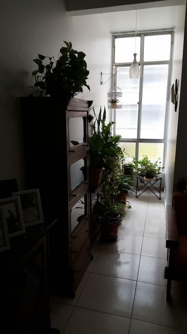 Parte de Vista da Sala, com vista para a Janela e a Rua