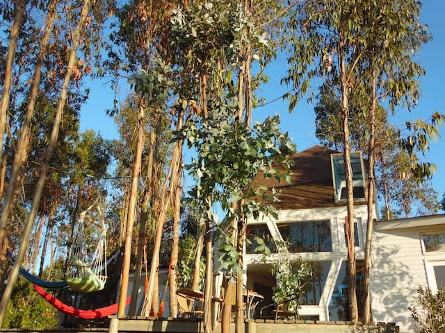 Algarrobo.disponible fines de seman - Algarrobo Norte - House