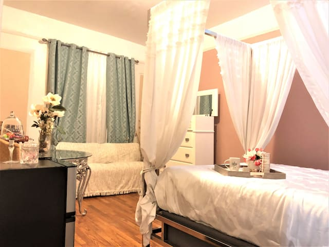 Whimsical Bronx Private Room for Medical Students