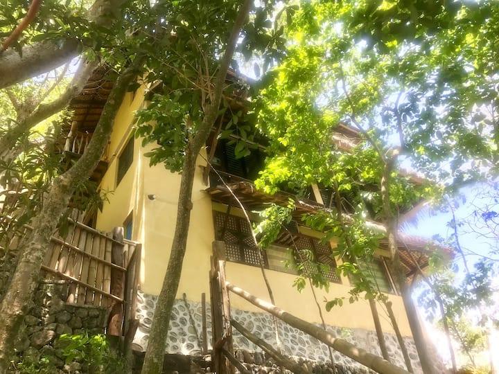 A NATURE GETAWAY VILLA IN MABINI BATANGAS