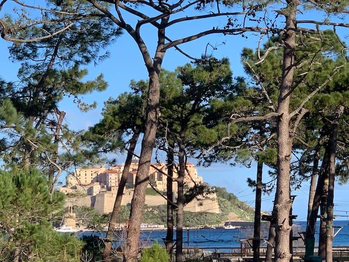 Appartement neuf, vue mer, sur plage de Calvi