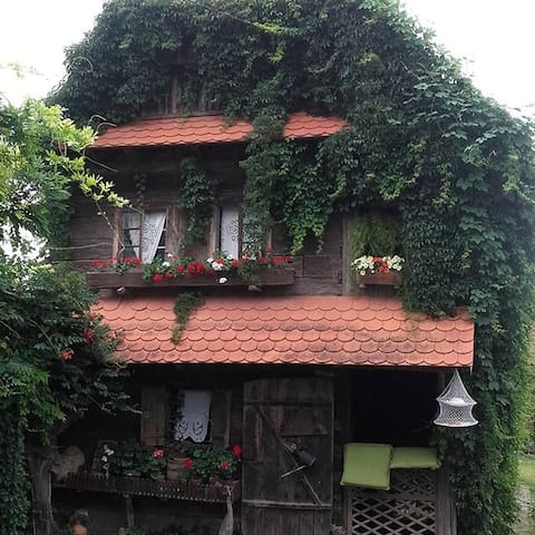 Rural Tourism Family Ravlic - Sisak - Casa
