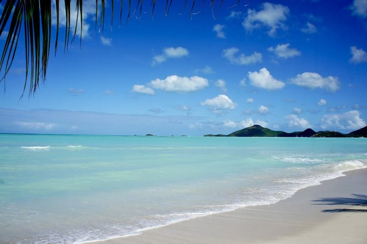 Paradise beach condo Marina Bay (Flexible refunds)
