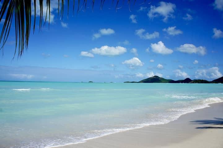 Caribbean Living@Marina Bay - Condo on the beach