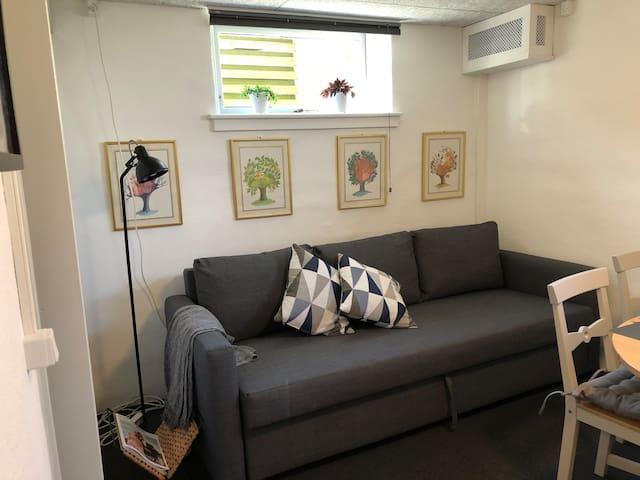 Sofa om dagen - seng om natten