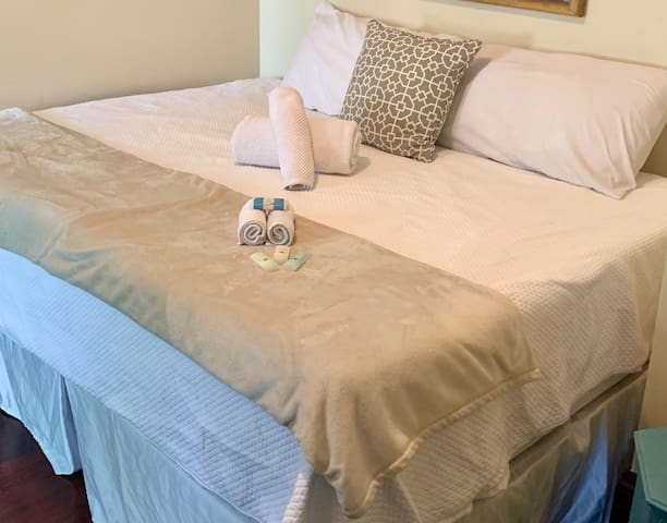 Cozy room in excellent downtown area (DiMaggio Rm)