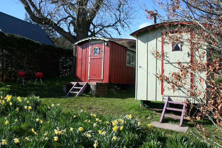 Balranald Shepherds hut(number one) - Highland - Hutte