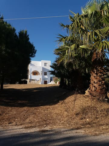 One bed apartment in Mikri Vigla, Naxos. - Naxos - Lejlighed